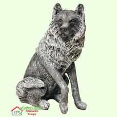 Волк 5-204