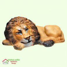 Львы Коты Кошки