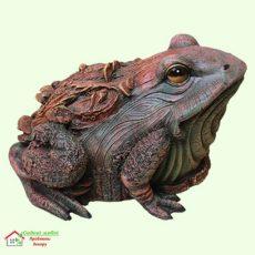 Жаба древесная 5-299