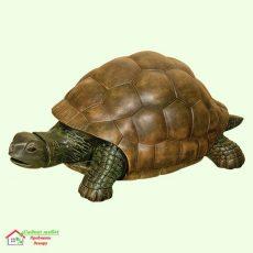 Черепаха (Б)  5-262
