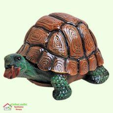 Черепаха гурман  5-269