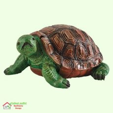 Черепаха (Ср)  5-263