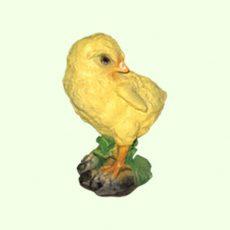 Цыпленок  5-161