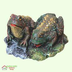 Две жабы  5-293