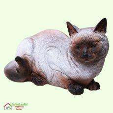 Кошка сиамская  5-247