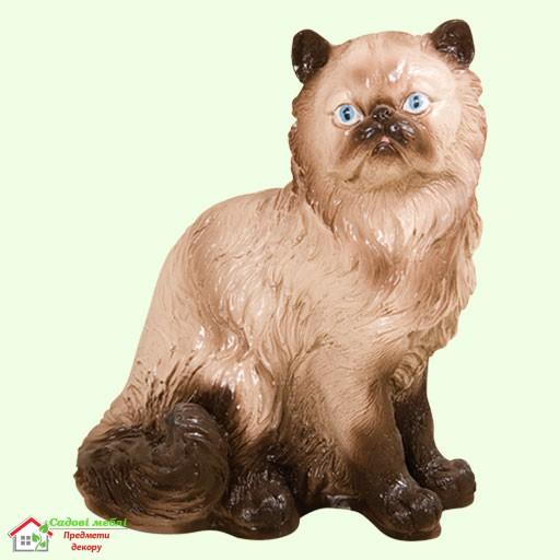 Кот персидский  5-246