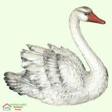 Лебедь (М)  5-172