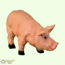 Свинья (М)  5-248