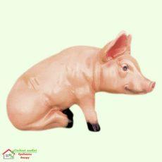 Свинья сидячая  5-255