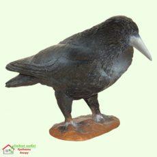 Ворона  5-177
