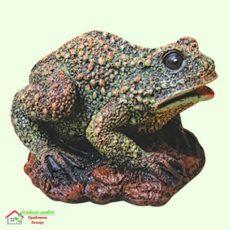Жаба болотная  5-292